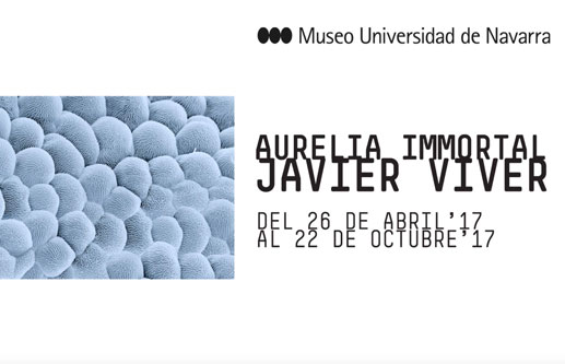 University of Navarra Museum Exhibition